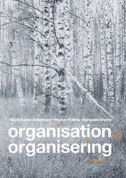 bokomslag Organisation och organisering