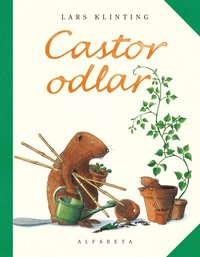 bokomslag Castor odlar