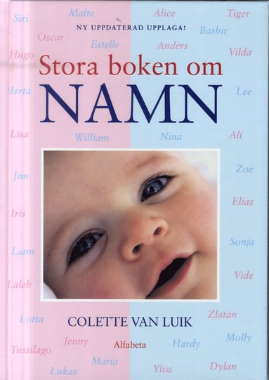 bokomslag Stora boken om namn