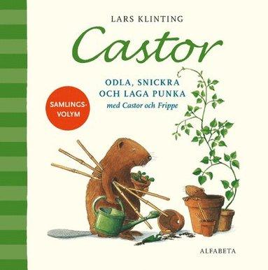 bokomslag Castor. Odla, snickra och laga punka med Castor och Frippe