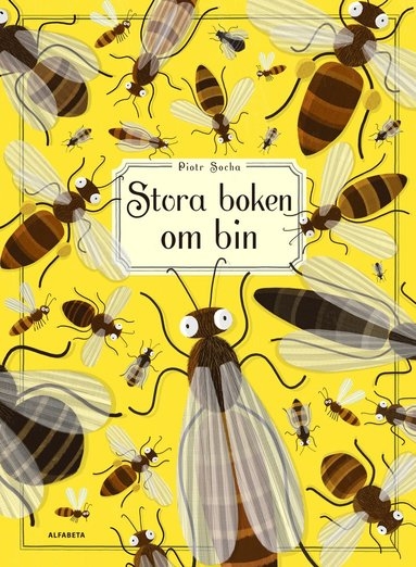 bokomslag Stora boken om bin