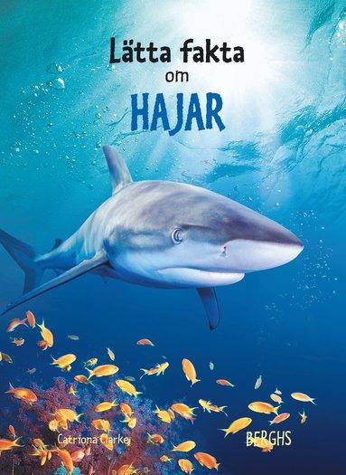 bokomslag Lätta fakta om hajar
