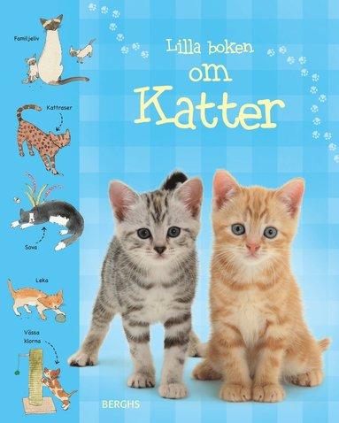 bokomslag Lilla boken om katter