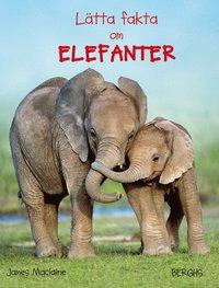 bokomslag Lätta fakta om elefanter