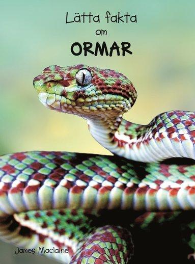 bokomslag Lätta fakta om ormar