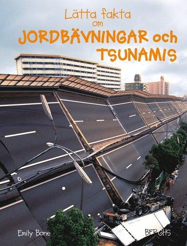 bokomslag Lätta fakta om jordbävningar och tsunamis