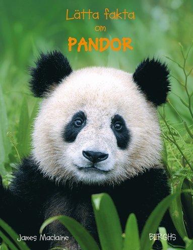 bokomslag Lätta fakta om pandor