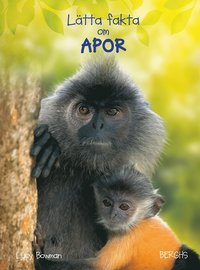 bokomslag Lätta fakta om apor