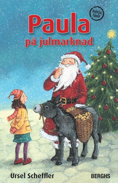 bokomslag Paula på julmarknad
