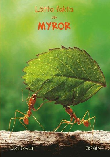 bokomslag Lätta fakta om myror