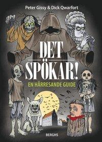 bokomslag Det spökar! : en hårresande guide