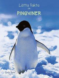 bokomslag Lätta fakta om pingviner