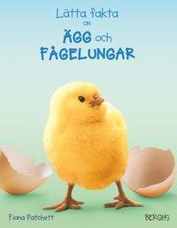 bokomslag Lätta fakta om ägg och fågelungar