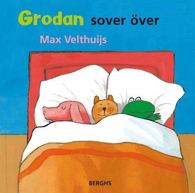 bokomslag Grodan sover över