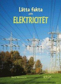 bokomslag Lätta fakta om elektricitet