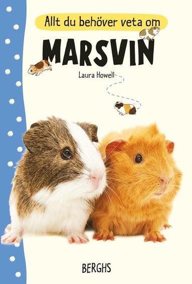 bokomslag Allt du behöver veta om marsvin