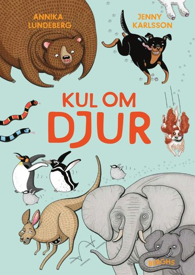 bokomslag Kul om djur