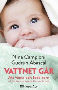bokomslag Vattnet går : att vänta och föda barn och den första omtumlande tiden med din bebis
