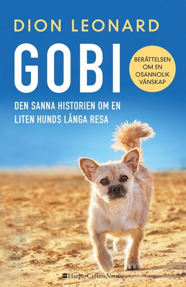 bokomslag Gobi : den sanna historien om en liten hunds långa resa