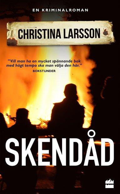 bokomslag Skendåd