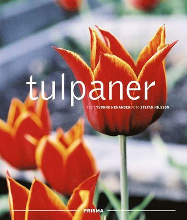 bokomslag Tulpaner