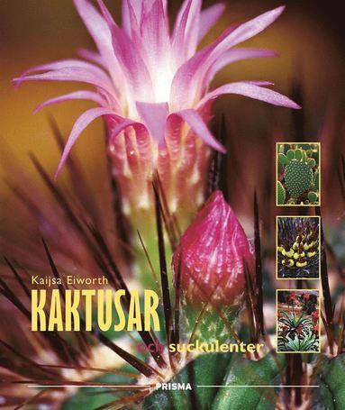 bokomslag Kaktusar och suckulenter