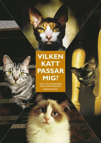 bokomslag Vilken katt passar mig? : Ingen katt är den andra lik