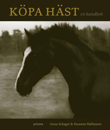bokomslag Köpa häst : en handbok