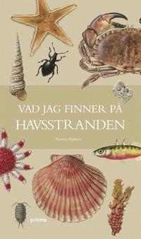 bokomslag Vad jag finner på havsstranden