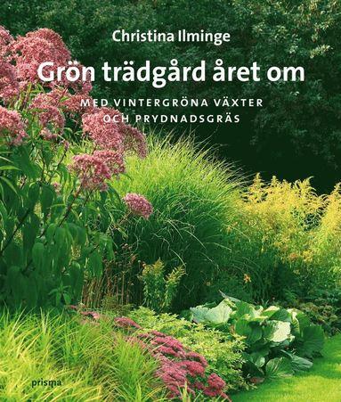 bokomslag Grön trädgård året om : med vintergröna växter och prydnadsgräs