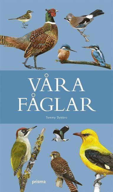 bokomslag Våra fåglar
