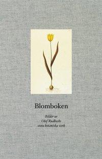 bokomslag Blomboken : bilder ur Olof Rudbecks stora botaniska verk