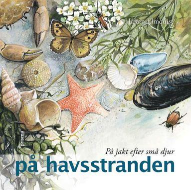 bokomslag På jakt efter små djur på havsstranden
