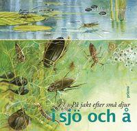 bokomslag På jakt efter små djur i sjö och å