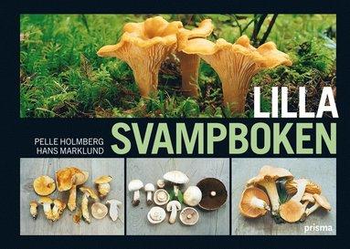 bokomslag Lilla svampboken