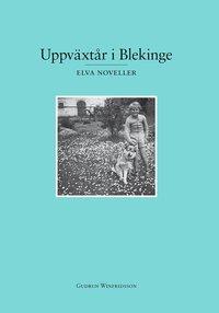 bokomslag Uppväxtår i Blekinge : elva noveller