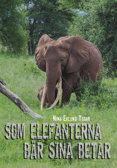 bokomslag Som elefanterna bär sina betar