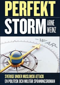 bokomslag Perfekt Storm