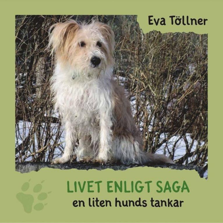 Livet enligt Saga - en liten hunds tankar 1