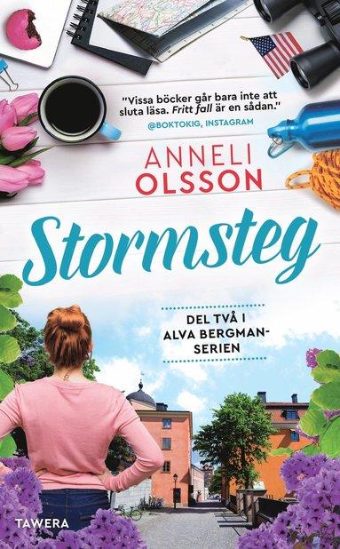 bokomslag Stormsteg