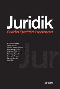 bokomslag Juridik - civilrätt, straffrätt, processrätt