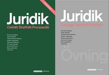 juridik civilrätt straffrätt processrätt