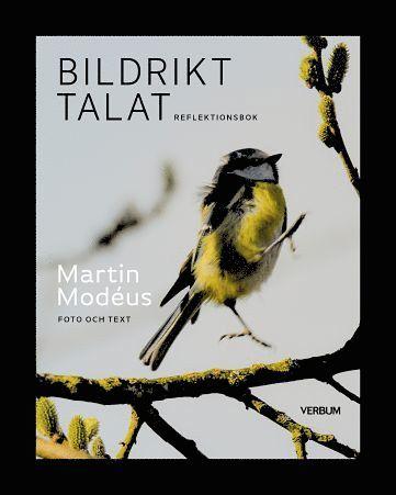bokomslag Bildrikt talat, reflektionsbok