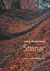 bokomslag Stenar