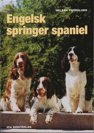 bokomslag Engelsk springer spaniel