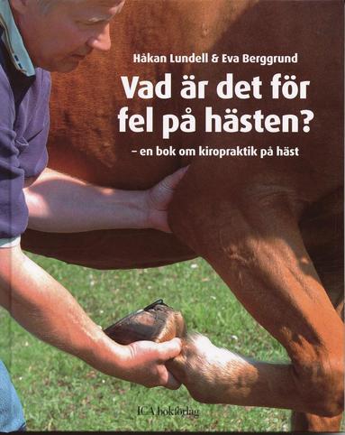 bokomslag Vad är det för fel på hästen? : en bok om kiropraktik på häst