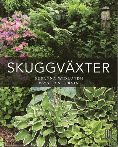 bokomslag Skuggväxter