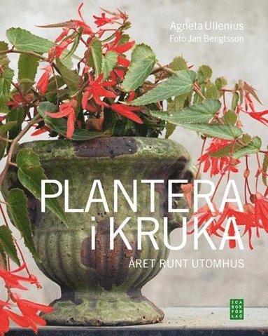 bokomslag Plantera i kruka