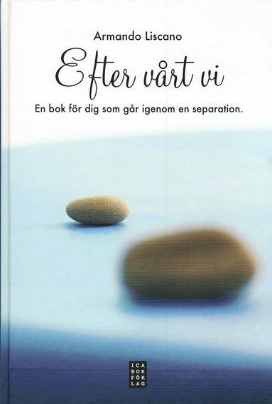 bokomslag Efter vårt vi : för dig som går igenom en separation