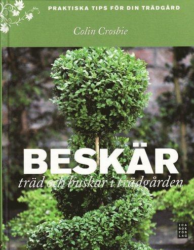 bokomslag Beskär träd och buskar i trädgården